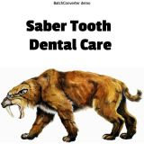 Saber Tooth Dental Care