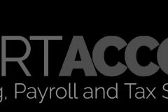 Expert Accounting Services
