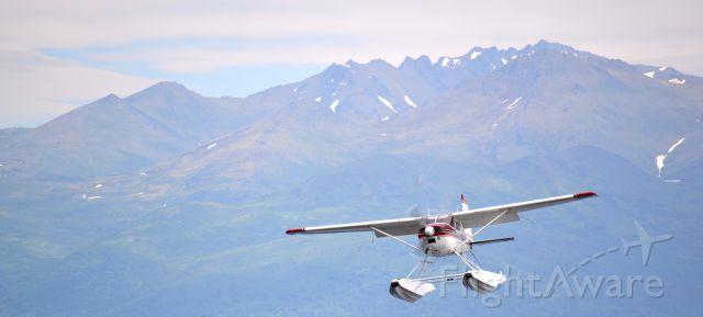Cessna Skywagon — - Cessna 185 Landing on Lake Spenard , Anchorage Alaska