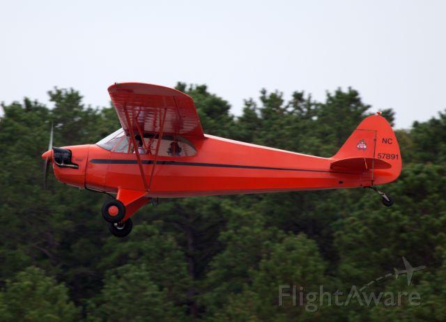 Piper L-21 Super Cub (N57891)