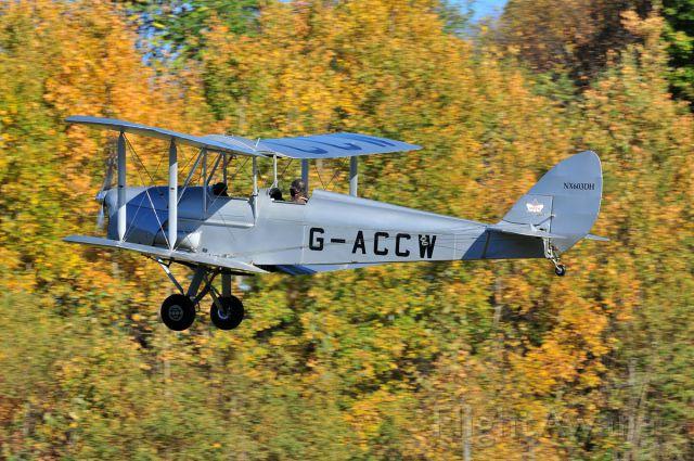 OGMA Tiger Moth (NX603DH) - Old Rhinebeck Aerodrome