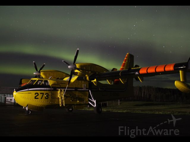 — — - Bathed in the Northern lights!