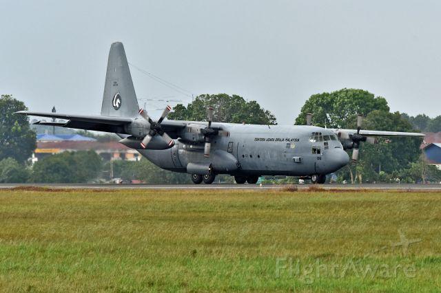 Lockheed C-130 Hercules (M3006) - Royal Malaysia Air Force
