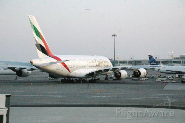 Airbus A380-800 (A6-EDW) - A Airbus A380 at JFK