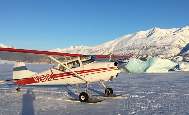 Cessna 170 (N2881C) - Lake George, AK