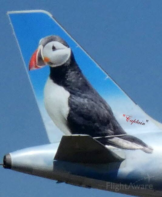 """Airbus A320neo (N322FR) - """"Captain"""" the Puffin on this Frontier Aircraft."""
