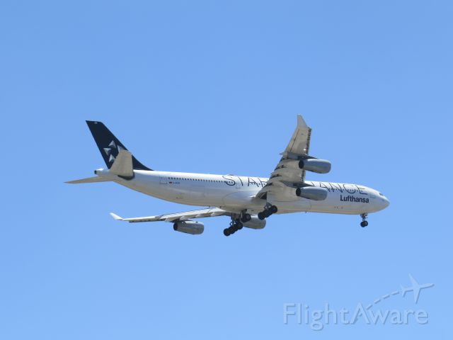 Airbus A340-300 (D-AIGN) - Landing Lufthansa with Star Alliance logos. San Diegos Balboa Park is in the landing pattern for Lindbergh