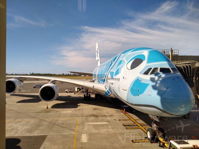 Airbus A380-800 (JA381A) - abordando la tortuga marina hawaiana, from Honolulu to Tokyo !!!