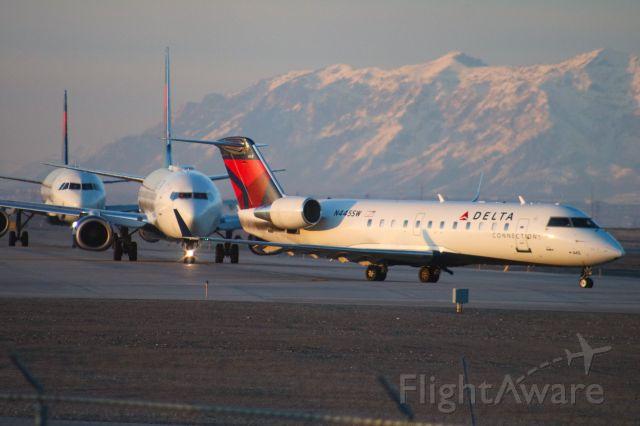Canadair Regional Jet CRJ-200 (N445SW) - Airbus, Boeing, Bombardier.