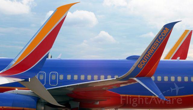 Boeing 737-800 (N8555Z) - A pair of split scimitar winglets.