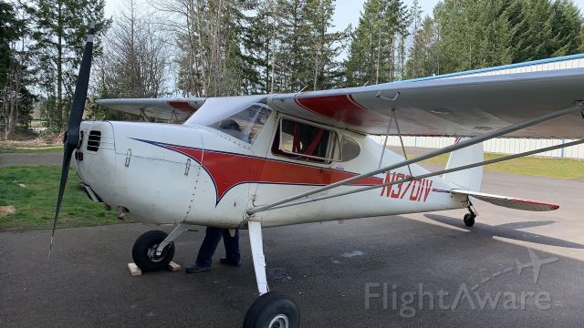 Cessna 140 (N3701V)