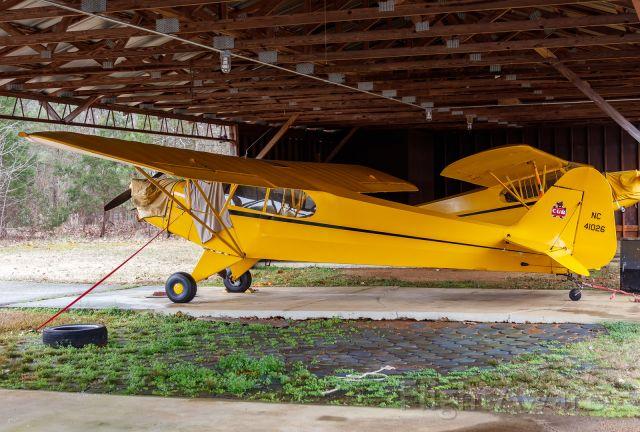 Piper L-21 Super Cub (N41026)