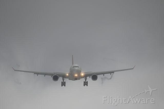 Airbus A330-300 (B-22102) - 14 February 2016:TPE-HKD.