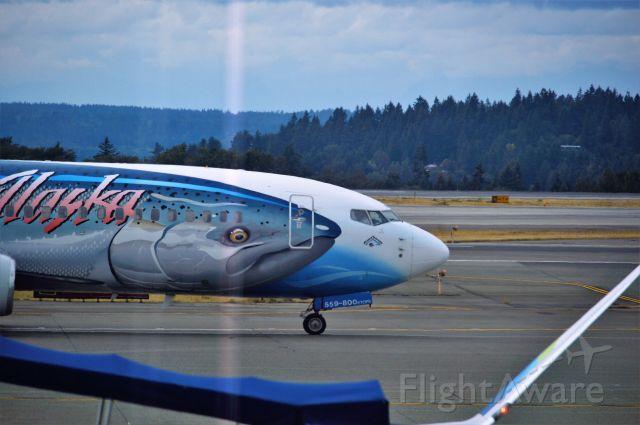 Boeing 737-700 — - going fishing.