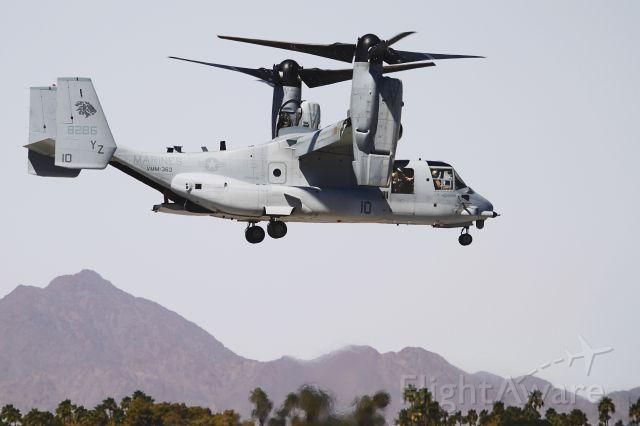 Bell V-22 Osprey (16-8286) - Osprey landing vertically at MCAS Yuma.