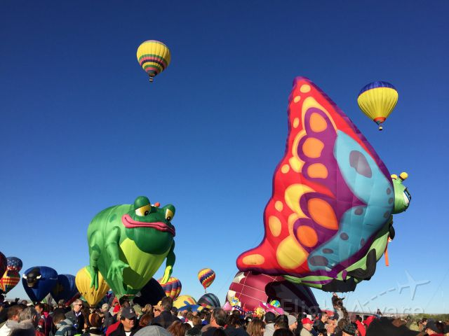 Unknown/Generic Balloon — - Frog and Butterfly. 2014 Albuquerque International Balloon Fiesta. October 4, 2014.