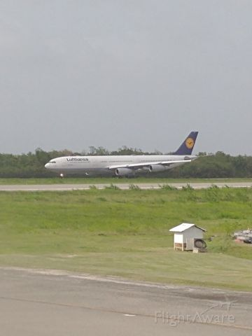 Airbus A340-300 (D-AIGZ) - View from American 737 as D-AIGZ arrived at Punta Cana - 6/16/21