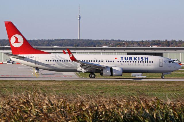 Boeing 737-800 (TC-JGO)