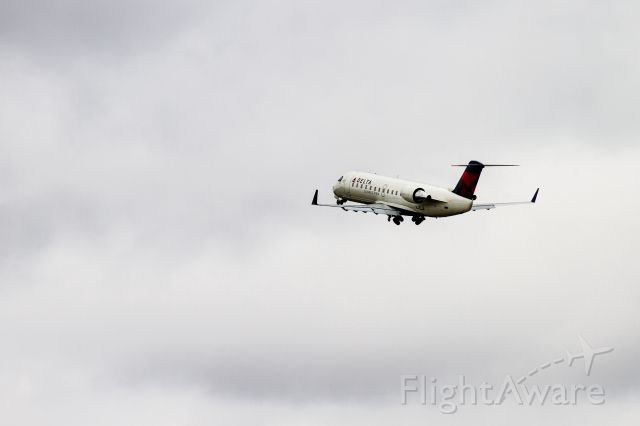 Canadair Regional Jet CRJ-200 (N461SW) - LAN - DTW