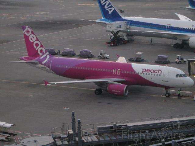 Airbus A320 (JA808P)