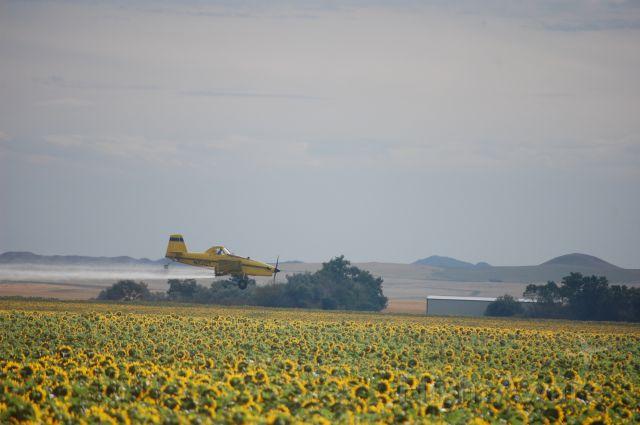 N1012T — - Air Tractor dusting sunflower field in North Dakota