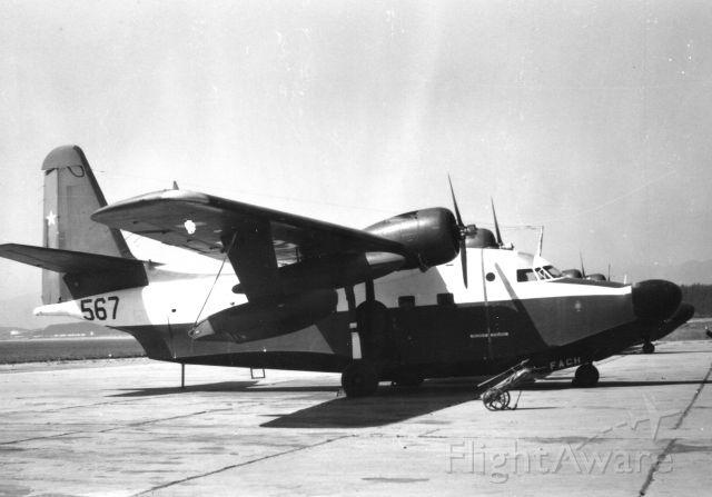 N567 — - Grumman HU-16B Albatross<br />Quintero Air Force Base<br />Chile Air Force<br />Photo: 21.03.1965