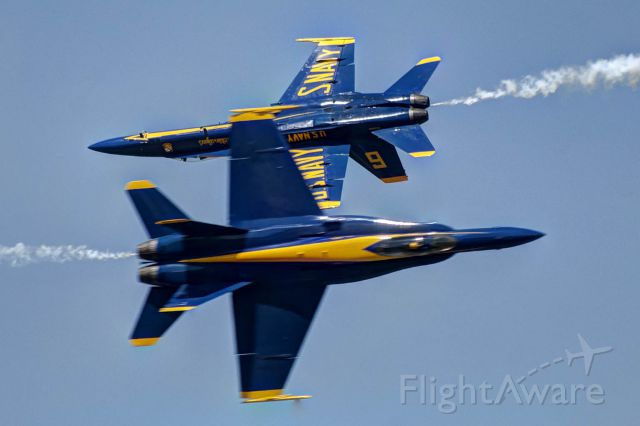 McDonnell Douglas FA-18 Hornet — - One shot, no motor drive used, one chance. Two U.S. Blue Angels F-18s perform an opposing pass maneuver at a Robins AFB Open House airshow