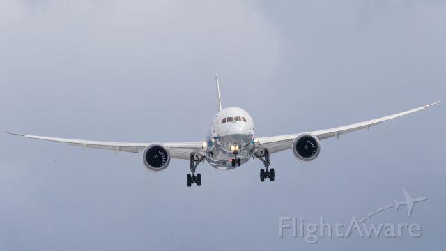 Boeing 787-8 (JA809A) - All Nippon Airways / Boeing787-881br /Dec.05.2015 Hakodate Airport [HKD/RJCH] JAPAN