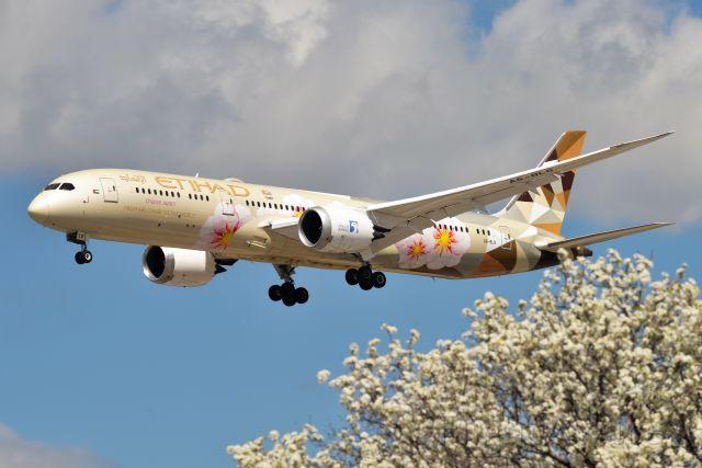 Boeing 787-9 Dreamliner (A6-BLS)