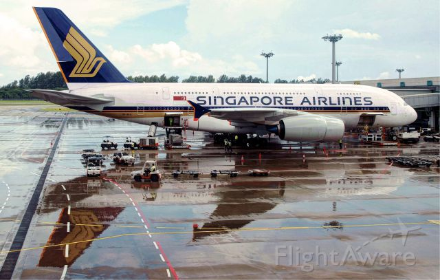 Airbus A380-800 (9V-SKA) - First produced Airbus 380-800 (9V-SKA) which was delivered to Singapore Airlines in 2007 and started commercial operation on 25 October 2007 with highly celebrated flight from Singapore to Sydney. <br />I