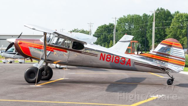 Cessna 170 (N8183A)