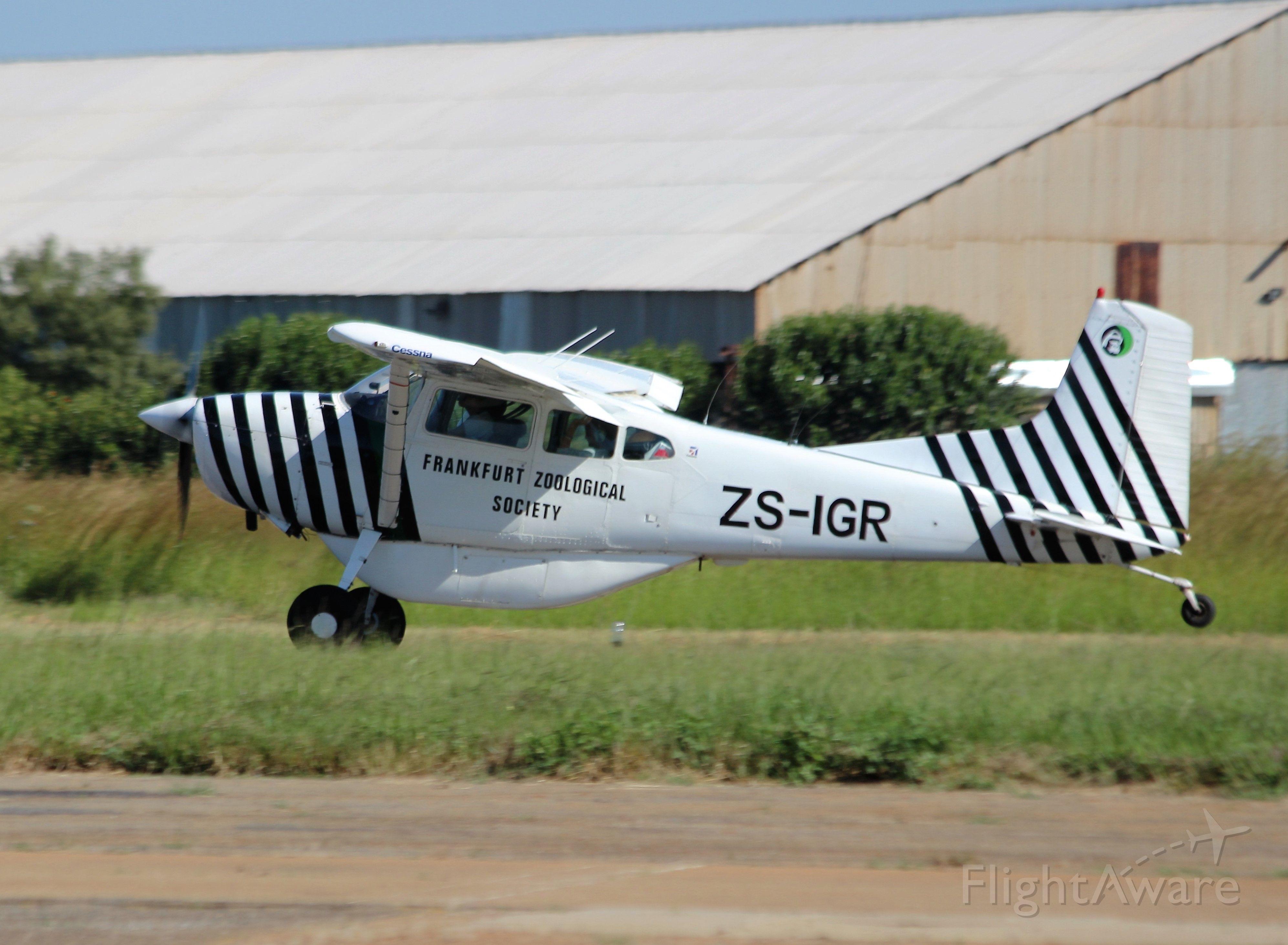 Cessna Skywagon (ZS-IGR)