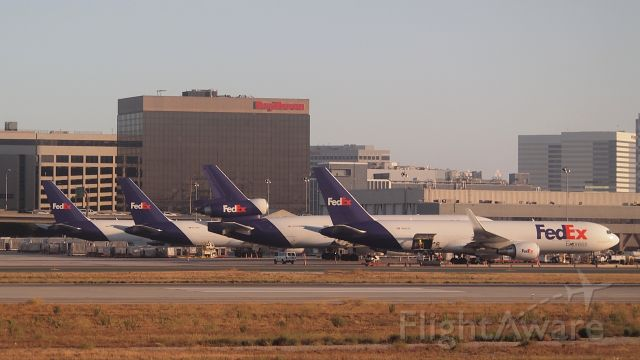 """BOEING 767-300 (N68079) - """"Evey"""" and friends"""
