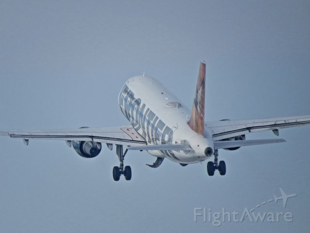 Airbus A319 (N953FT)
