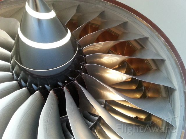 Boeing 787-8 — - What the blades look like when the plane is brand new!!!