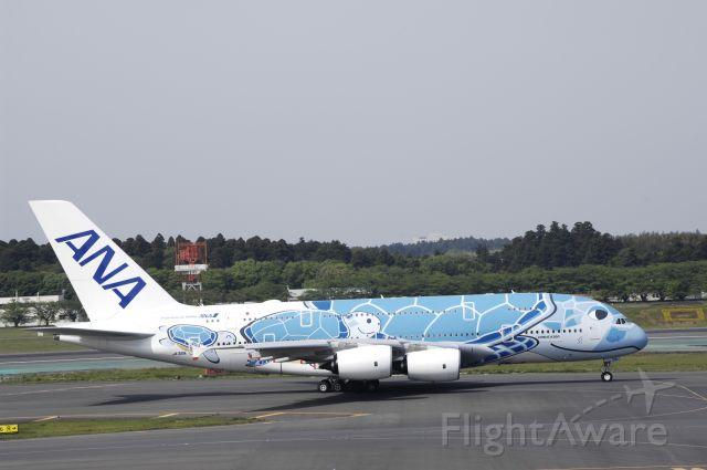Airbus A380-800 (JA381A) - at RJAA on 2019/05/05