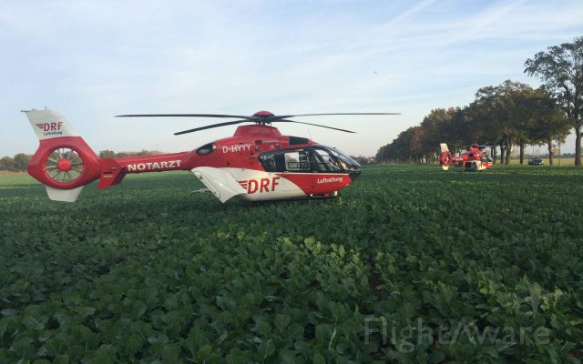 Eurocopter EC-635 (D-HYYY) - with 100km/h against tree , two seriously injured - EC-H135 + EC-H145 ( DRF )