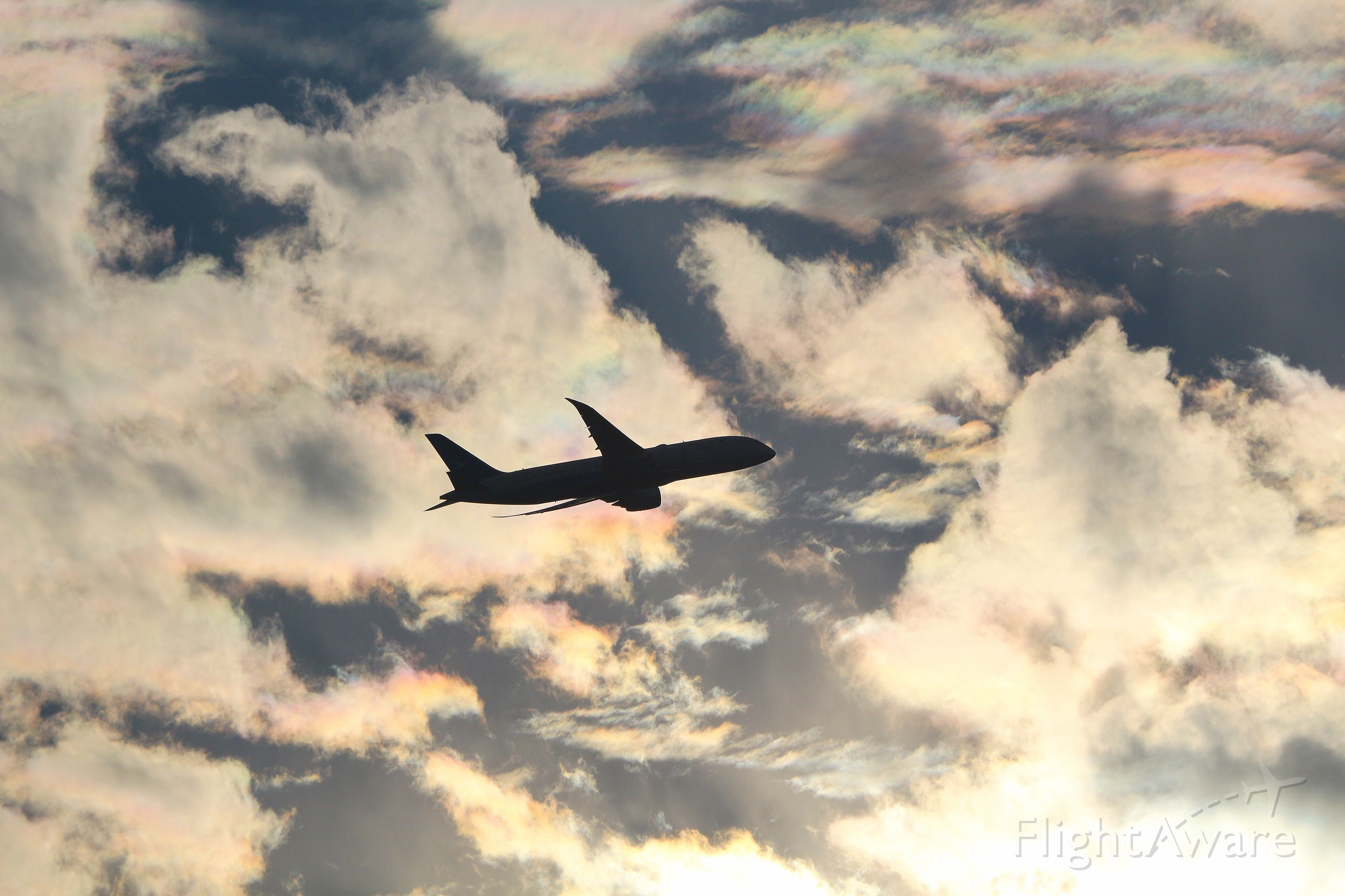 Boeing Dreamliner (Srs.8) (B-2761)