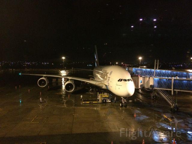 Airbus A380-800 (A6-EOL) - AIRBUS A.380-861