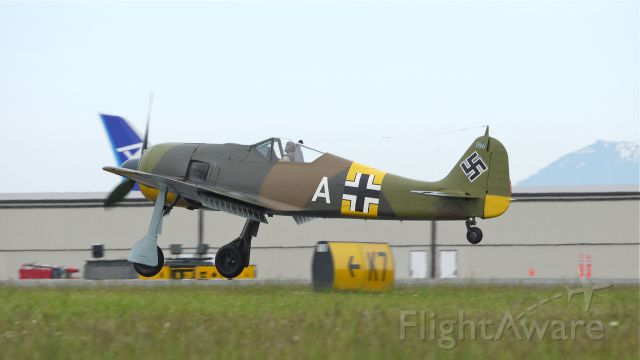 FOUR WINDS 192 (N19027) - Flying Heritage Collections Focke-Wulf FW 190-A5 (WkNr 151227) touching down on runway 34L on 6/15/12.