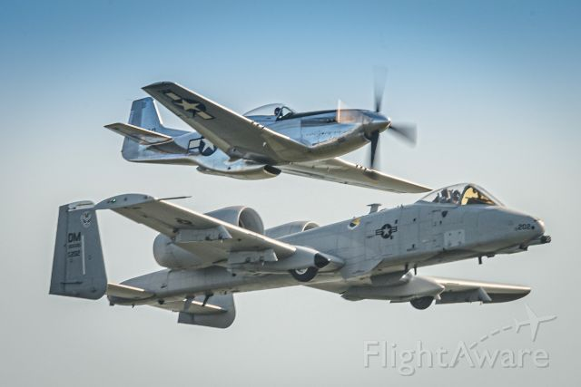 North American P-51 Mustang (N151AM) - P-51D 44-73420 (N151AM) flying a Heritage Flight with Davis-Monthan A-10 79-202 during Fleet Week 2018 over Baltimore