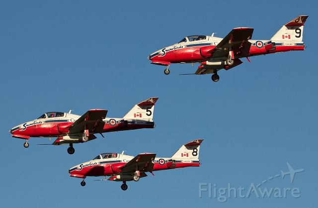 """Canadair CL-41 Tutor (11-4109) - RCAF Snowbirds 5, 8, and 9 arriving for the Alliance Fort Worth Airshow 10/09/2018. (Please view in """"full"""" for highest image quality)"""