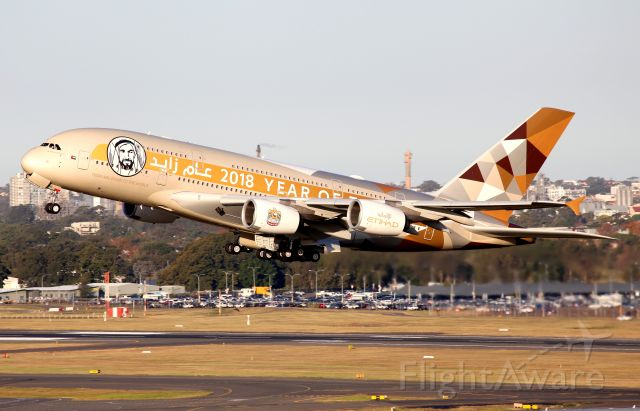 """Airbus A380-800 (A6-APH) - Lifting Off From Rwy 34L """"Year of Zayed 2018"""" C/S"""