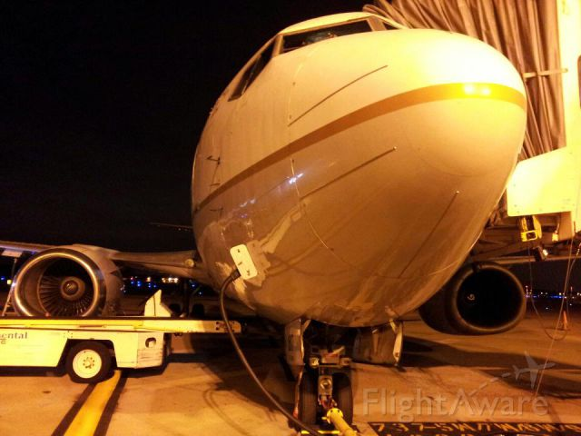 Boeing 737-500 (N16617) - View from the push-back tug