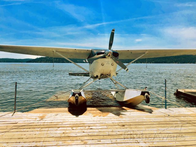 Cessna 206 Stationair (N8366C) - pulled up for lunch!
