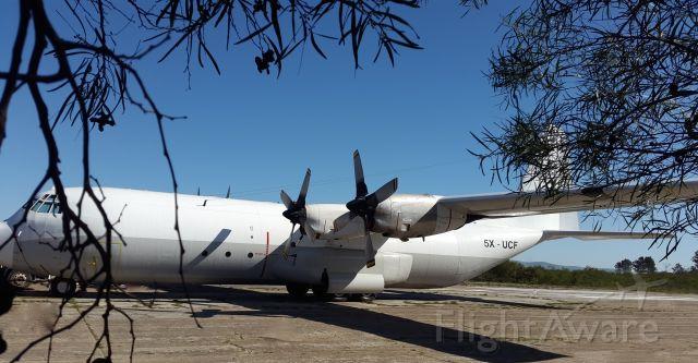 Lockheed C-130 Hercules (5X-UCF) -  WW2 movie shoot