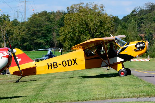 HB-ODX — - 1944 built former 44-80834 (USAF) taxiing at Piper Cub FlyIn 2014.