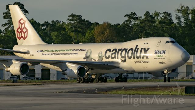 Boeing 747-400 (LX-ECV) - Cargolux Sea Life Trust livery taxiing to East Cargo ramp KIAH