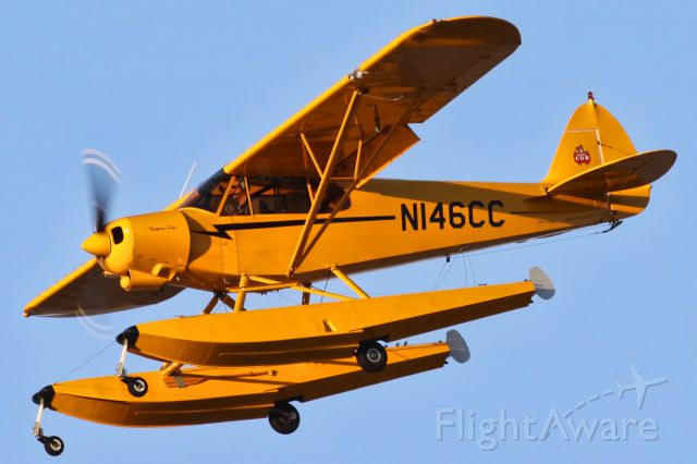 Piper L-21 Super Cub (N146CC)