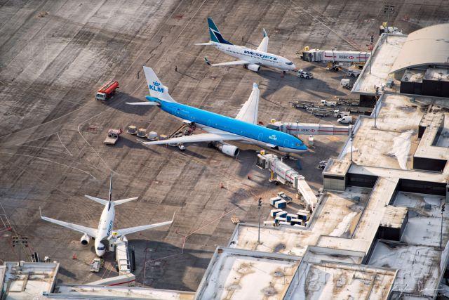 Airbus A330-300 (PH-AOA) - Air to Ground